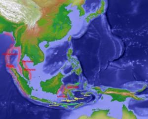Korallenbleiche in Suedostasien 2010