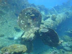 Schiffsschraube - Vergessene Inseln