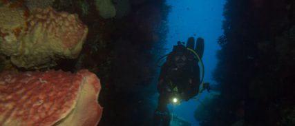 Banda: Unterwasserhöhle
