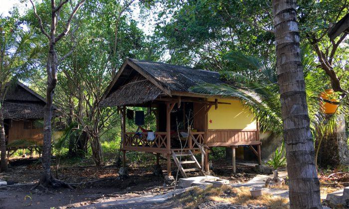Hoga Island Dive Resort: Einzelbungalow