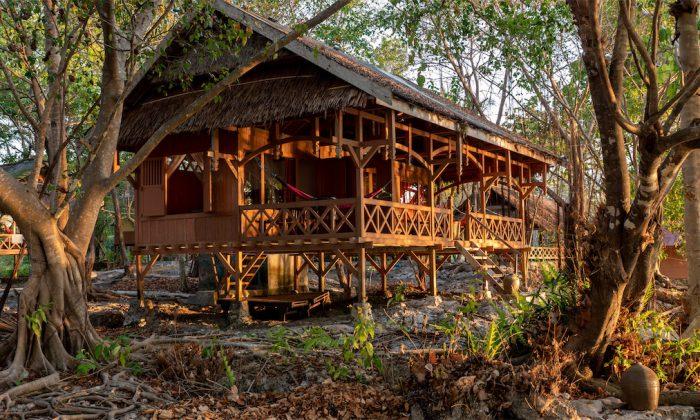 Hoga Island Dive Resort: Doppelbungalow