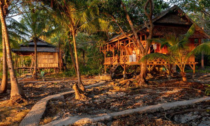 Hoga Island Dive Resort: Doppelbungalows unter Palmen