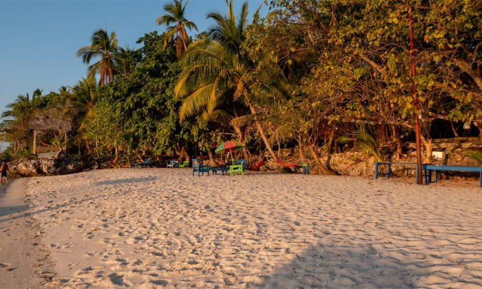 Hoga Island Dive Resort: Der Strand