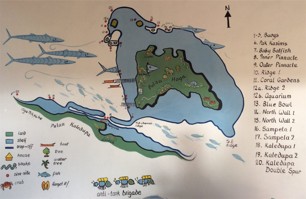 Insel Hoga Tauchplätze