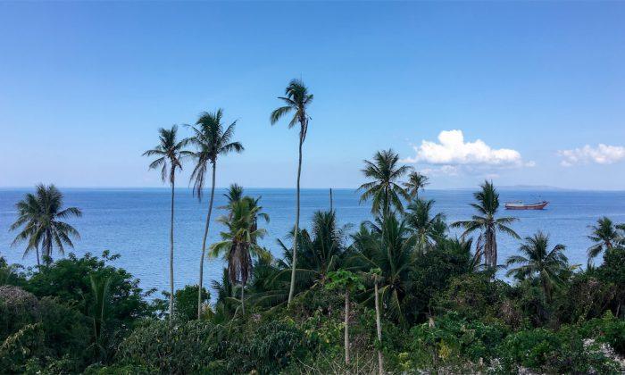 Marind Dive Resort Ausblick