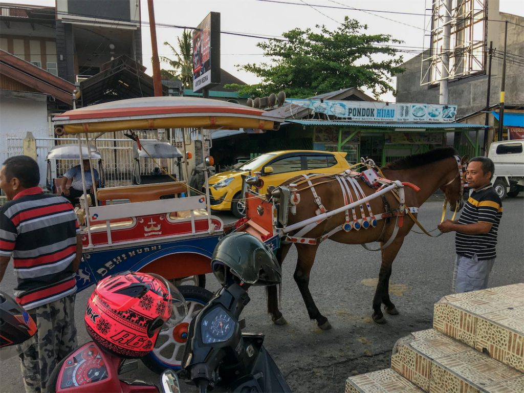 Pferdedroschke wartet auf Kunden in Gorontalo