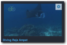 Videos: Tauchen in Raja Ampat